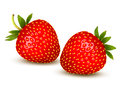 Ripe strawberry with leaves vector Stock Images