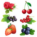 Ripe strawberry, raspberry, cherry, blackberry, black and red cu Royalty Free Stock Photo