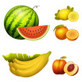 Ripe striped watermelon realistic juicy fruits banana vector illustration slice green isolated ripe melon.