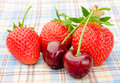 Ripe sweet cherries and strawberries on the checked tablecloth close up of Royalty Free Stock Photos