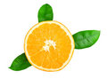 Ripe tasty orange Royalty Free Stock Photography