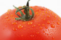Ripe tomato closeup Royalty Free Stock Images