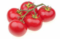 Ripe tomato red vine on a white background Royalty Free Stock Photos