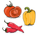 Ripe tomato, yellow bell pepper and red hot chili Royalty Free Stock Photo