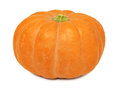Ripe whole pumpkin (isolated) Stock Photography
