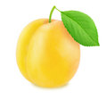 Ripe yellow plum with green leaf. With clipping path Royalty Free Stock Photo