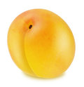 Ripe yellow plum isolated Royalty Free Stock Photo