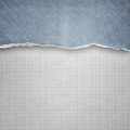 Riped denim on cell paper background Stock Image