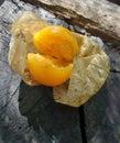 Ripen Cape Gooseberry And Dry ...
