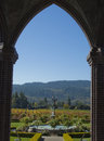 Ripened vineyards of sonoma california looking out onto the well manicured a winemaker in photo made october Stock Photography