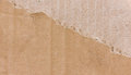 Ripped brown cardboard can be use as background Stock Image