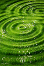 Rippled green background Royalty Free Stock Photo