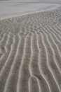 Rippled sand texture Royalty Free Stock Photo