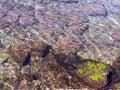 Rippled surface of stony seabed Royalty Free Stock Photo