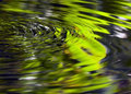 Ripples Royalty Free Stock Photo