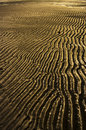 Rippling sands Royalty Free Stock Photo