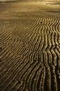 Rippling sands an amazing sandy australian beach Royalty Free Stock Photography