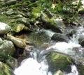 Rippling water Royalty Free Stock Photo