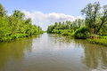 Rippling water surface in a wide Dutch creek Royalty Free Stock Photo