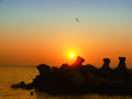 Rise picture made on the black sea jupiter constanta romania Royalty Free Stock Photo