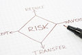 Risk management diagram Royalty Free Stock Image