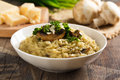 Risotto ai funghi Royalty Free Stock Photo