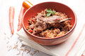Risotto with bone-in lamb Royalty Free Stock Images