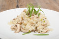 Risotto with mushrooms typical italian con funghi Stock Photos