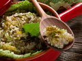 Risotto with savoy cabbage Royalty Free Stock Images