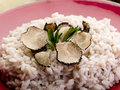 Risotto with truffle Royalty Free Stock Images