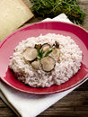 Risotto with truffle Royalty Free Stock Photography