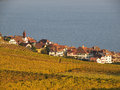 Rivaz in Lavaux Royalty Free Stock Images