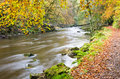 River Allen in autumn Royalty Free Stock Photo