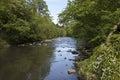 River Almond Royalty Free Stock Photo
