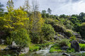River and autumn colorful forest with a blue sky Stock Photography