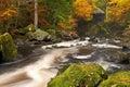 Río otoño color en