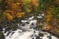 River through autumn colours in Scotland Royalty Free Stock Photo