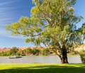 River barge crossing murray river south australia Royalty Free Stock Photography