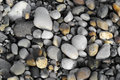 River or beach stones background, texture Stock Image
