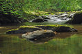 River ceiriog tranquil scene Royalty Free Stock Photo