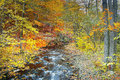 River chomutovka in autumnal forest in krusne hory mountains czech republic Stock Photos