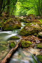 River deep in mountain Royalty Free Stock Image