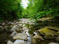 River deep in mountain forest nature composition Royalty Free Stock Images