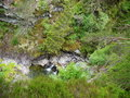 River deep in mountain forest nature composition Royalty Free Stock Photography