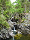 River deep in mountain forest nature composition Stock Photography
