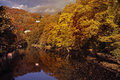 River derwent in autumn the valley at matlock bath is very colourful the Stock Images