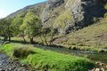River Dove Royalty Free Stock Photo