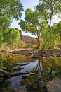 River at fish creek canyon in Arizona Stock Photography