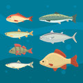 river fish. Set of freshwater sea cartoon fishes. Fauna ocean vector illustration Royalty Free Stock Photo