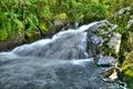 River flow / Ecology scene Royalty Free Stock Photo